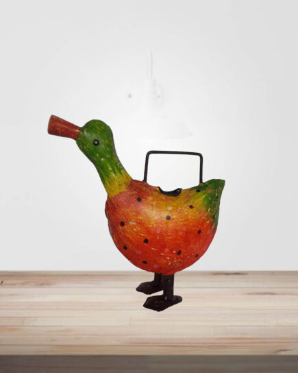 watering-can-duck